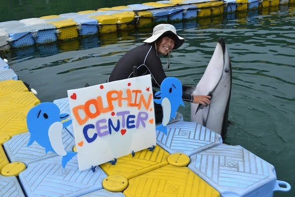 Japanese Dolphinarium 101: Japanese Dolphin Center