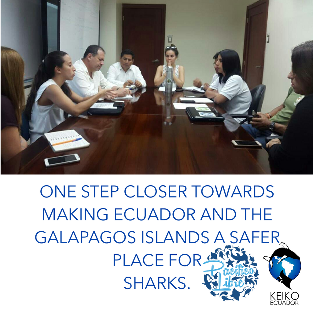 What's Your Bycatch: One Step Closer To Making Ecuador And The Galapagos Islands A Safer Place For Sharks