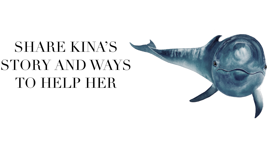 justice for kina how to help sea life park the cove keiko conservation