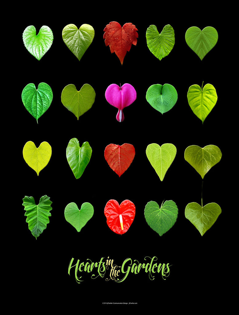 Hearts in the Gardens Poster, Black