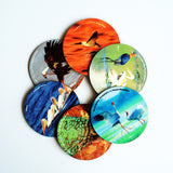 "Hot Muggs ""World of Birds"" MDF (Recycled Wood) Coasters; Set of 6 - Hot Muggs - 1"