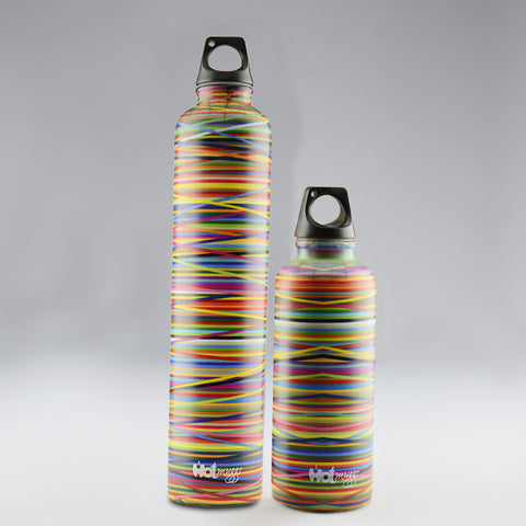 Hot Muggs Colors Large & Small Stainless Steel Bottle,2Pc