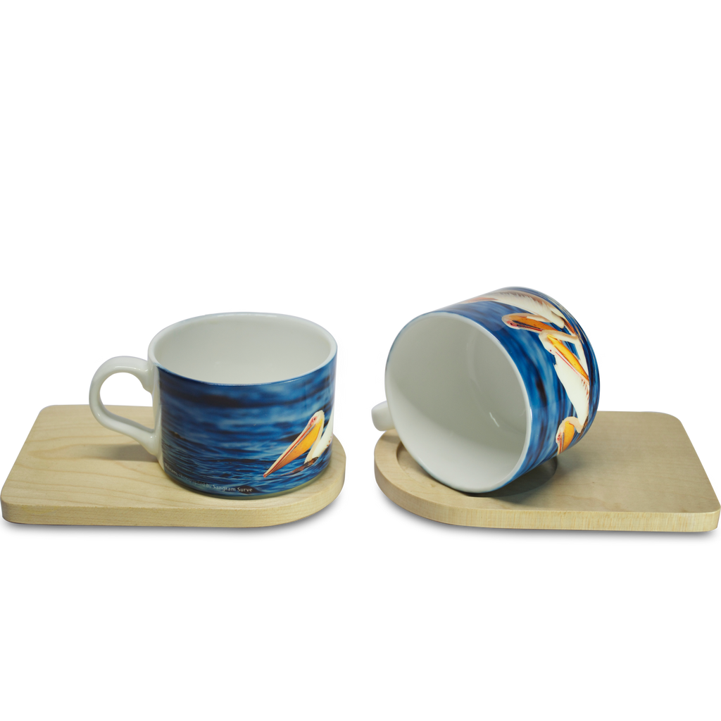 Where Friends- Cup & Coaster(Set of 2) - Hot Muggs