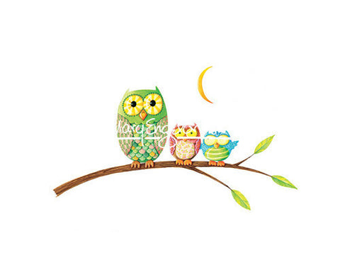 Owls on a Limb Fine Art Print