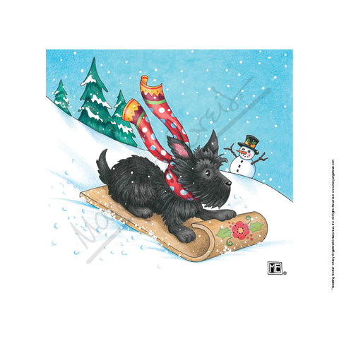 Sledding Scottie Fine Print