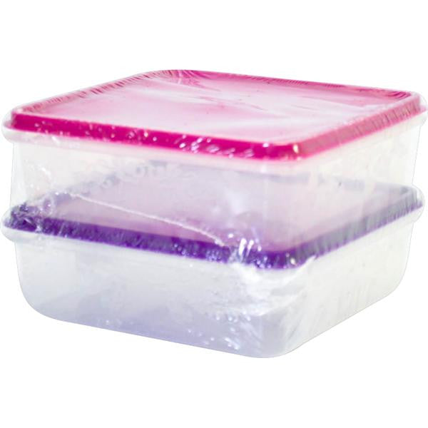 600ml BERRY LUNCH BOX 2pc