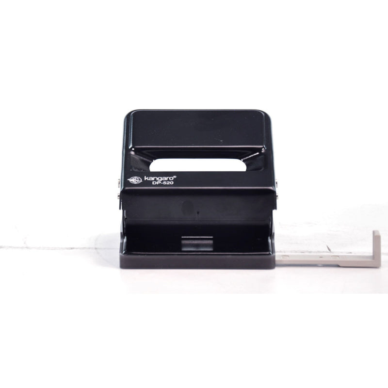 2 HOLE PUNCH 25pg DP520