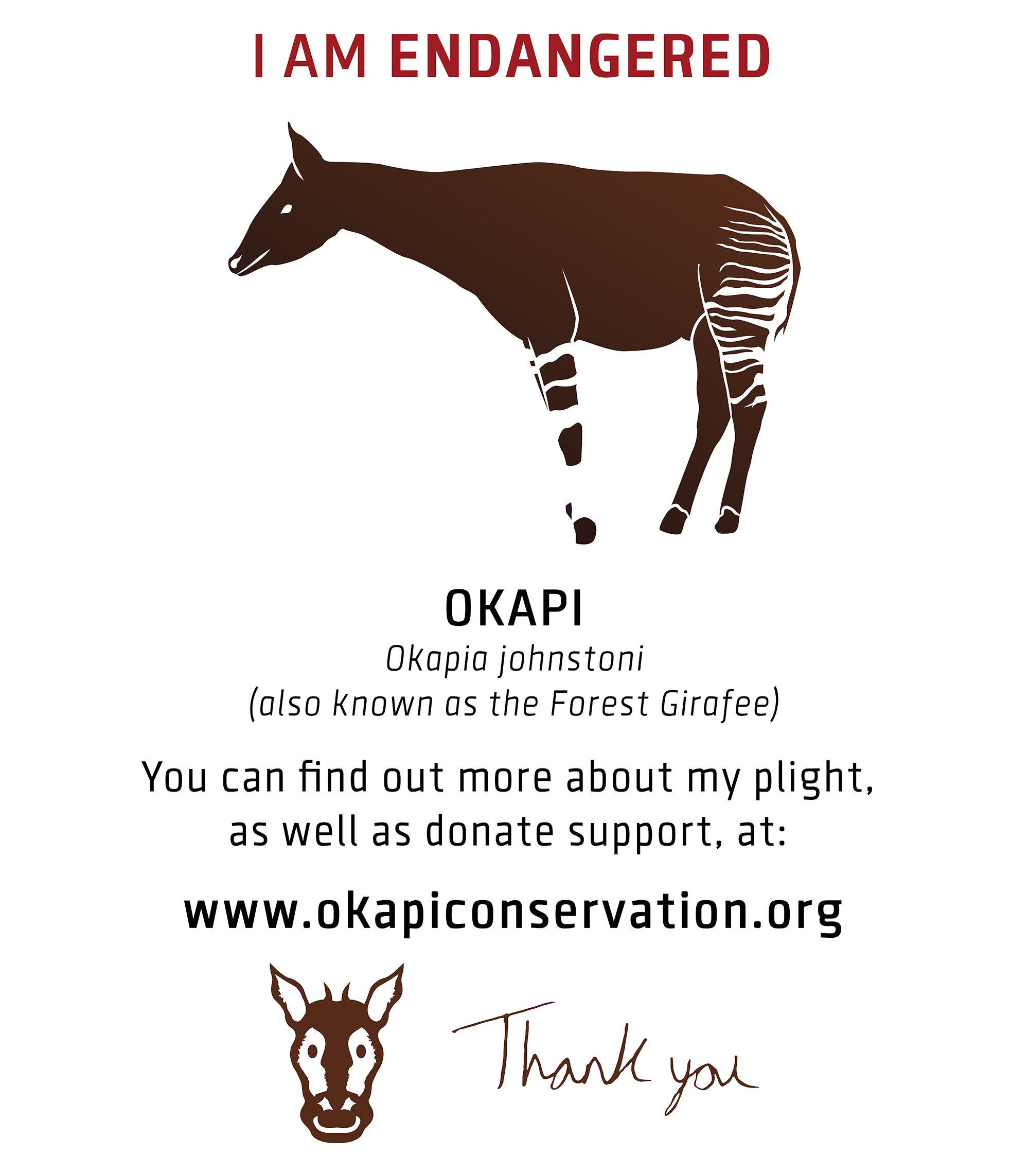 Okapi - Conservation Brand concept [T-SHIRT BACK] design