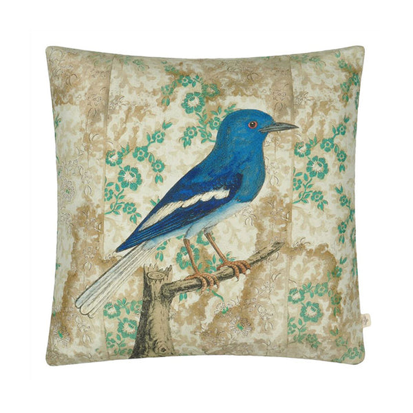 John Derian Wallpaper Birds Sepia Cushion