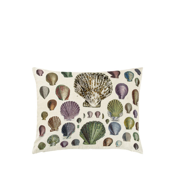 Captain Thomas Brown's Shells Oyster Cushion | John Derian