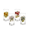 Botanic Garden Old Fashioned Glass Painted Highball Set