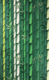 Wallpaper Enchanted Gardens Bamboo 01