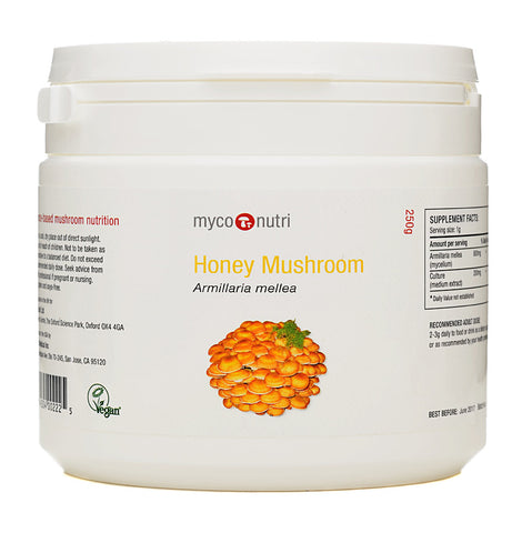 MycoNutri Honey Mushroom - 250g