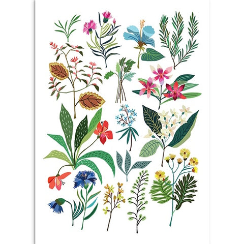 Summer Plant Art Print - Large Illustration with Colourful Plants and Flowers