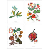 Four Seasons Postcard Set - Spring, Summer, Autumn and Winter Plant Illustrations