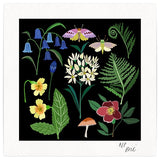 Woodland Giclée Print - square illustration of plants, flowers and insects on a black background
