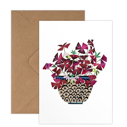 Oxalis Greeting Card - Illustration of Plant with Red Leaves in Patterned Pot