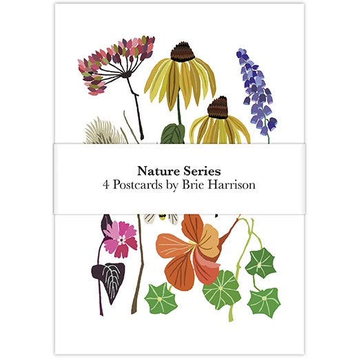 Nature Postcard Set