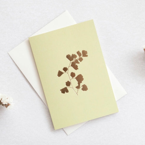 Pale green greeting card with foil blocked illustration of fern