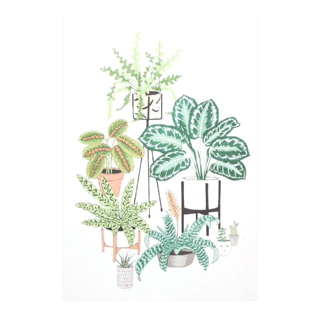 Plants Illustration Blank Inside Greetings Card