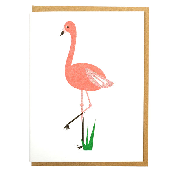 pink flamingo illustrated greetings card blank inside