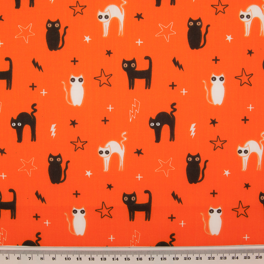 Halloween Cats & Stars on Orange -  Polycotton