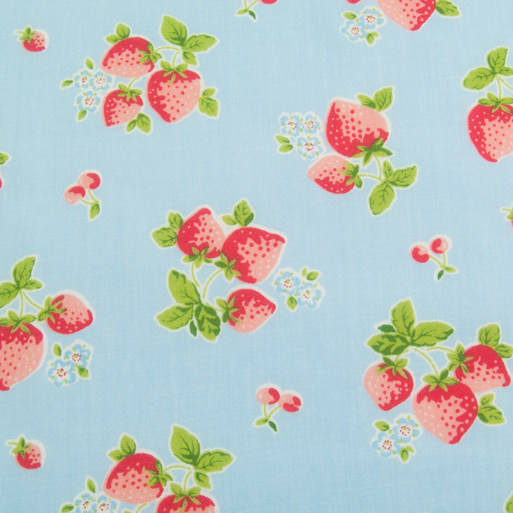 Summer Strawberries - Blue