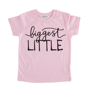 biggest little tshirt pink biggest little sibling tee shirt set pregnancy announcement sibling tshirt set