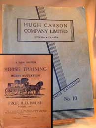 Horse and Harness - c1920's   (Horse training and Equipment.)