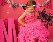 Hot Pink Feather Dress
