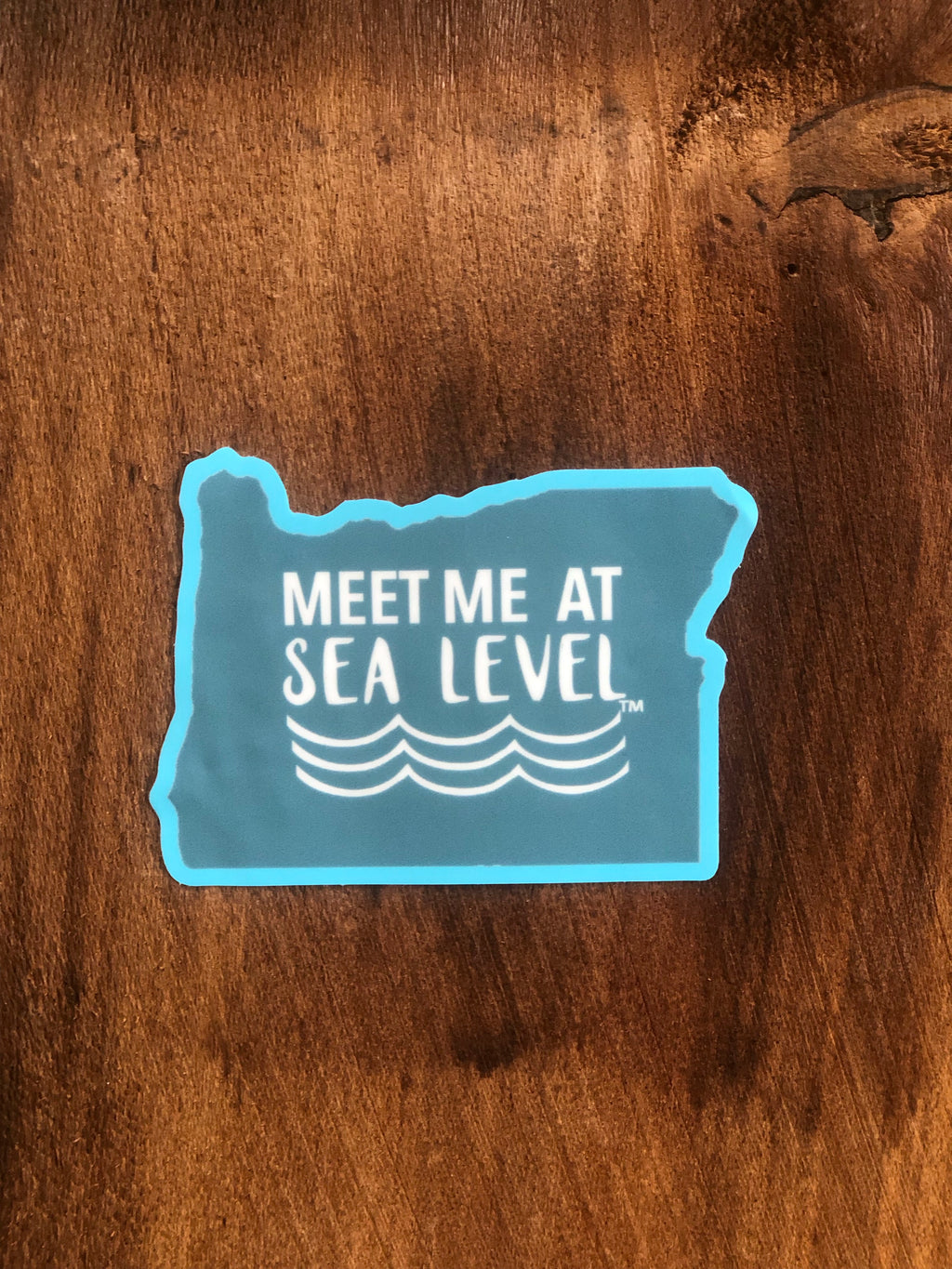 Meet Me At SEA Level Sticker