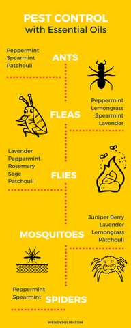 essential oils for pest