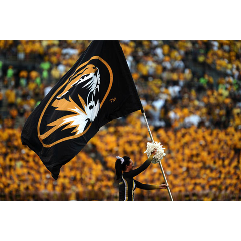 Tigers Flags & Banners