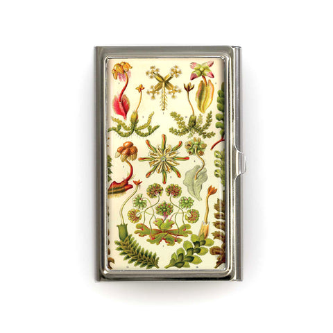 Card Case - 4239S