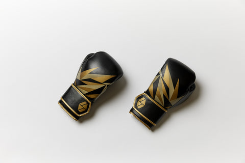 Bia Boxing Gloves (Available in 7 Colors)