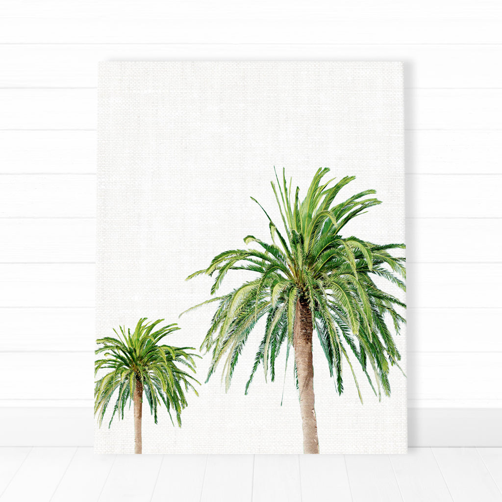 Canvas - Beach Palms