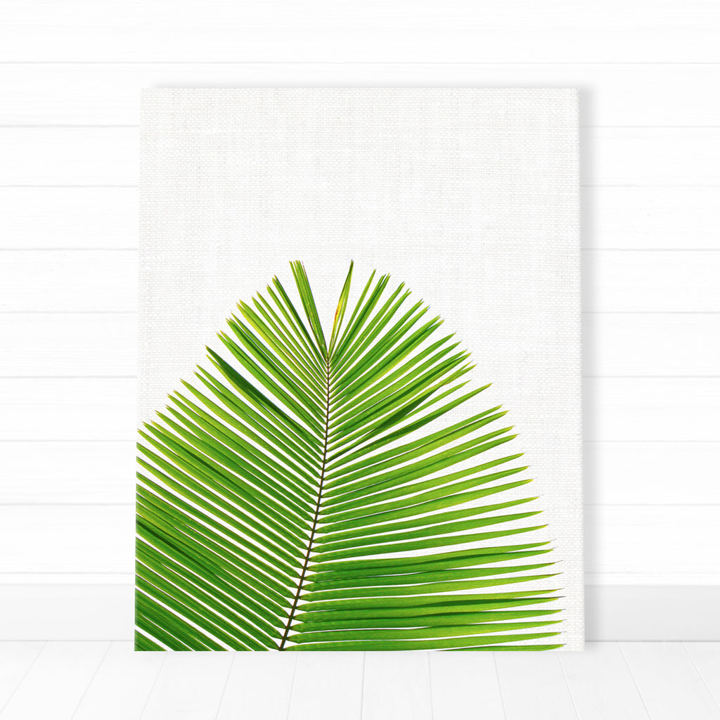 Canvas - Palm Leaf