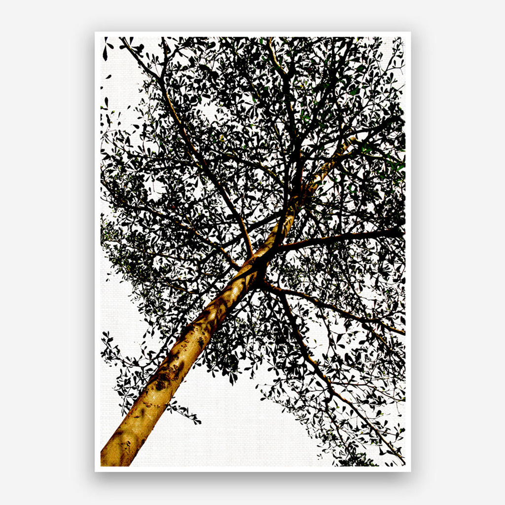 Digital - Gold Tree