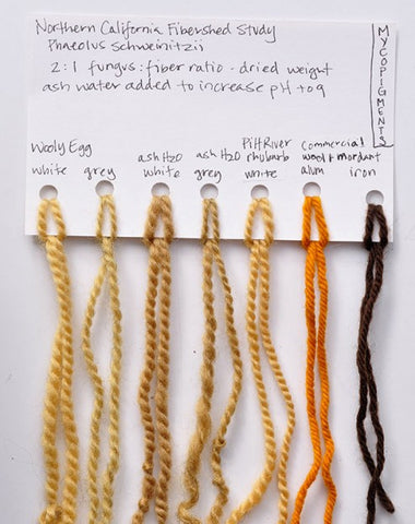Mycopigments Naturally Dyed Yarn