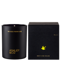 Ashley Candle
