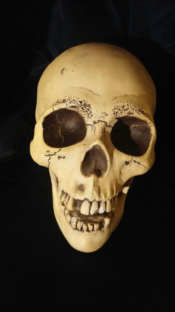 Vintage Randotti Glow in the dark Skull