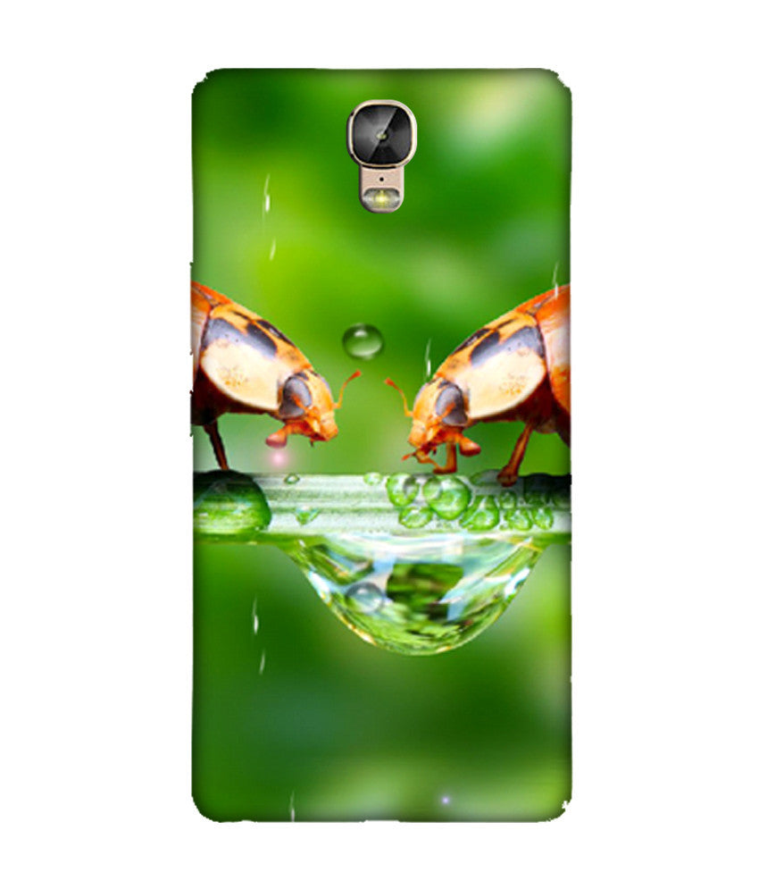 Creatives 3D Rain Gionee Case