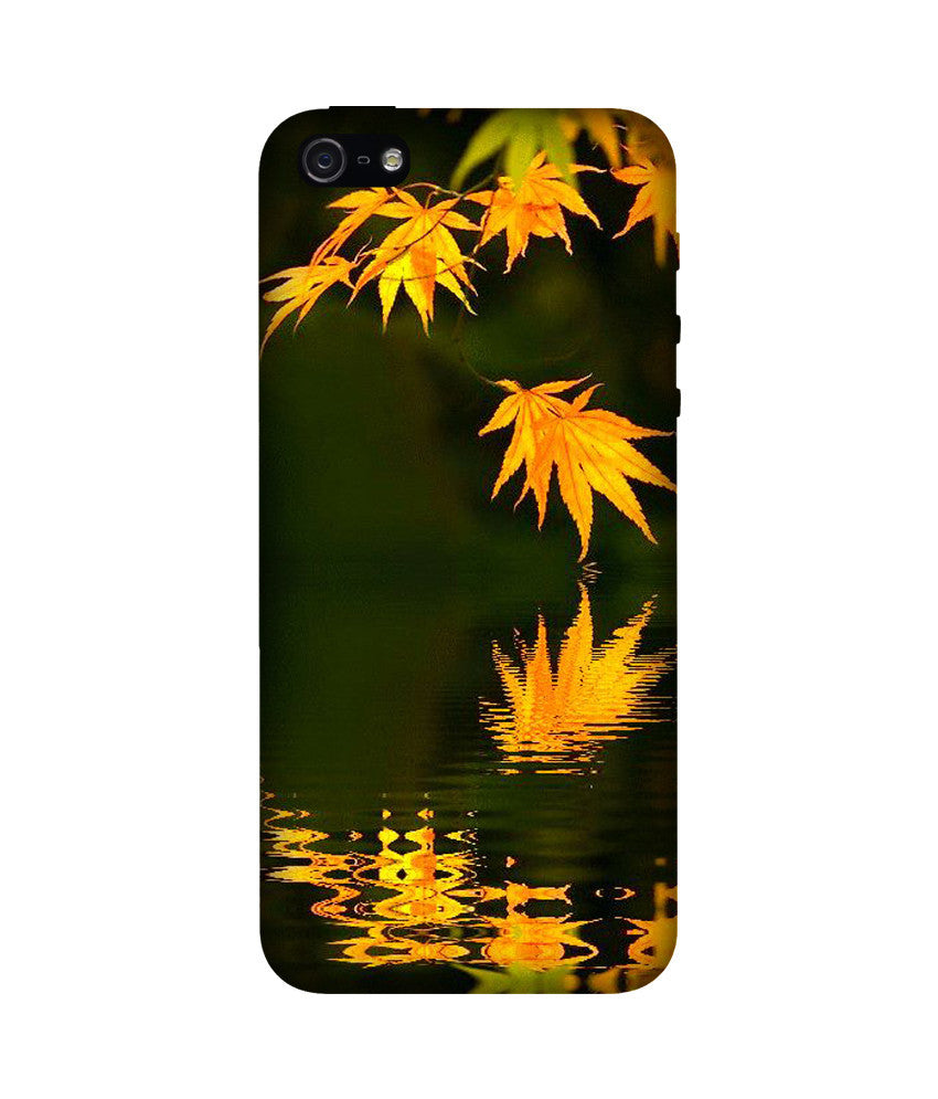 Creatives 3D Flower Iphone Case