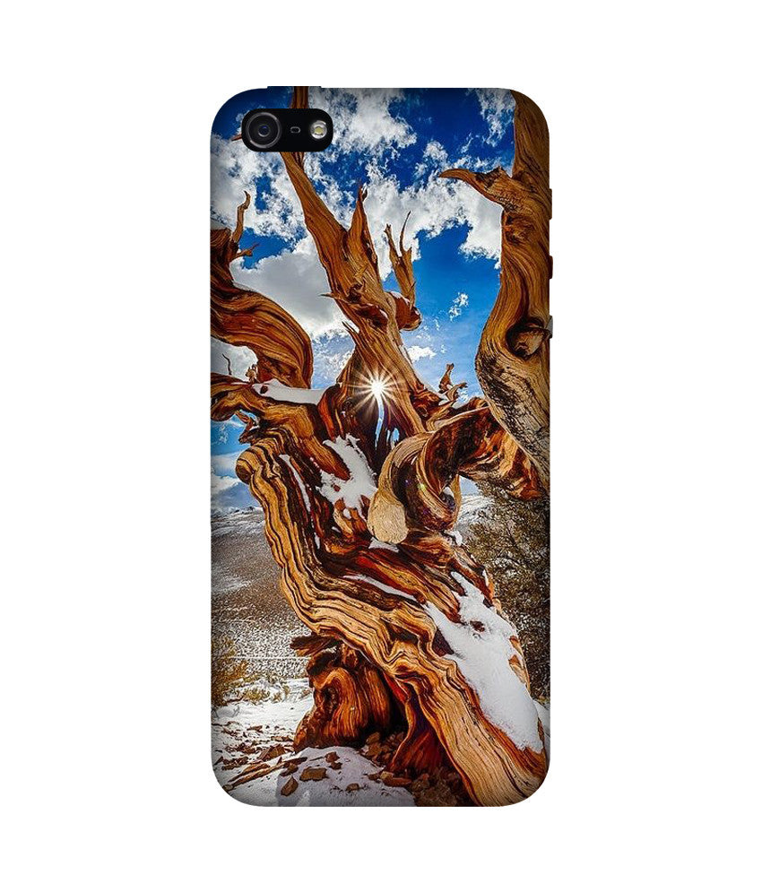 Creatives 3D Tree Iphone Case