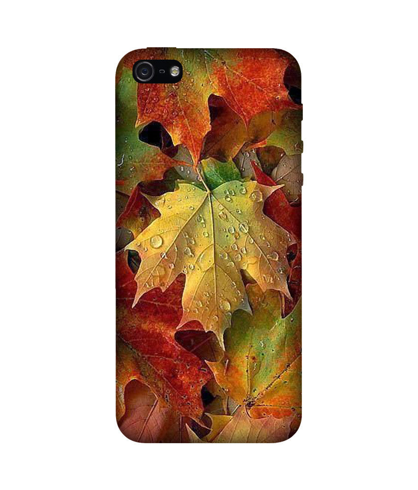 Creatives 3D Leaf Iphone Case