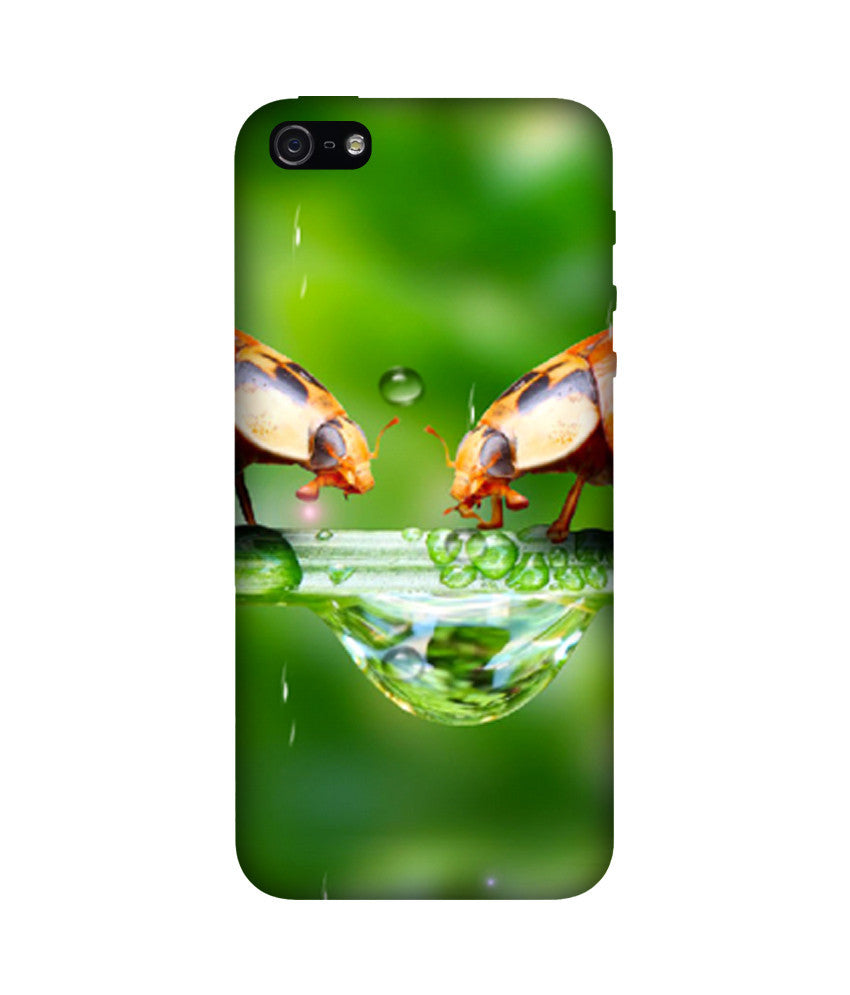 Creatives 3D Rain Iphone Case