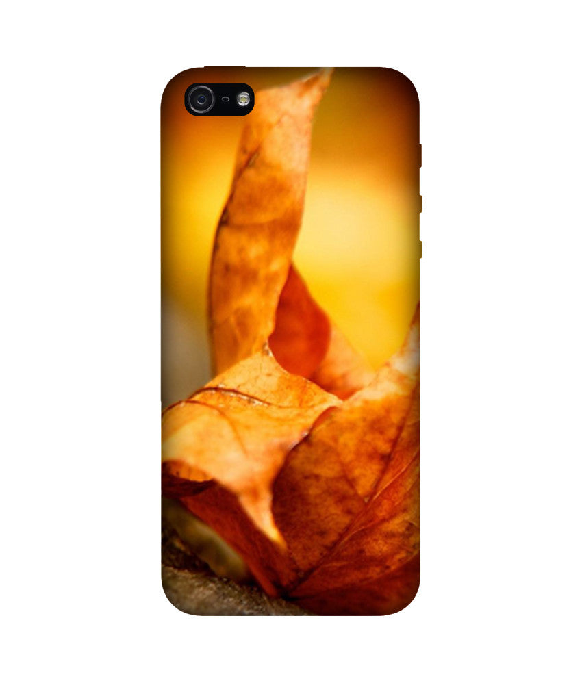 Creatives 3D Dry Leaf Iphone Case