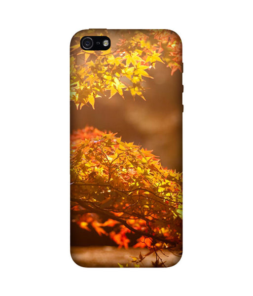 Creatives 3D Autumn Iphone Case