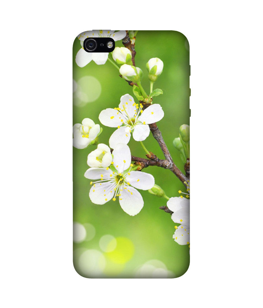 Creatives 3D Spring Iphone Case
