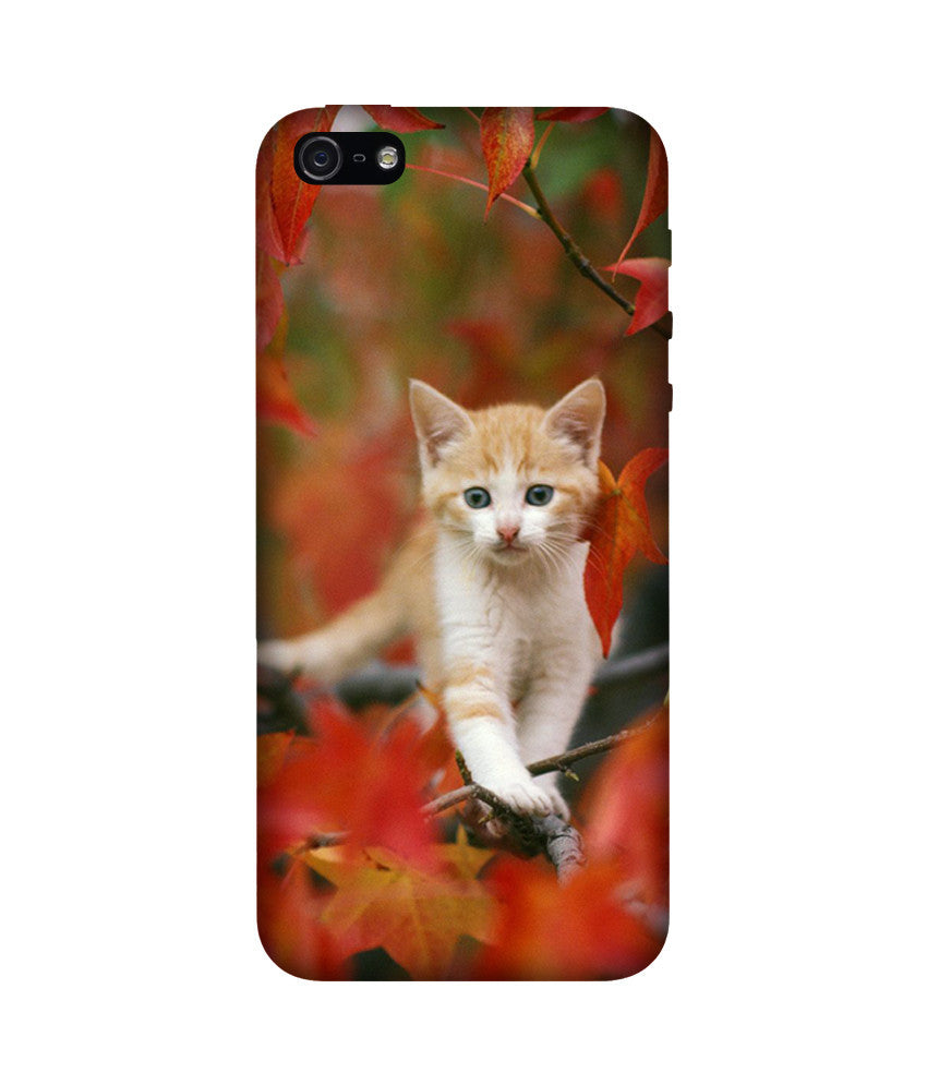 Creatives 3D Cat Iphone  Case